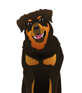 Illustration of a large rottweiler seen from the chest up, with a large open grin and ears flopped forward.