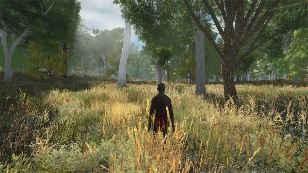 Screenshot of a Nyoongar man standing amongst high-growing grass, looking across at trees in the distance.